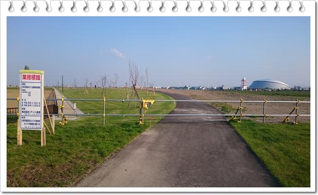 空港緑地①