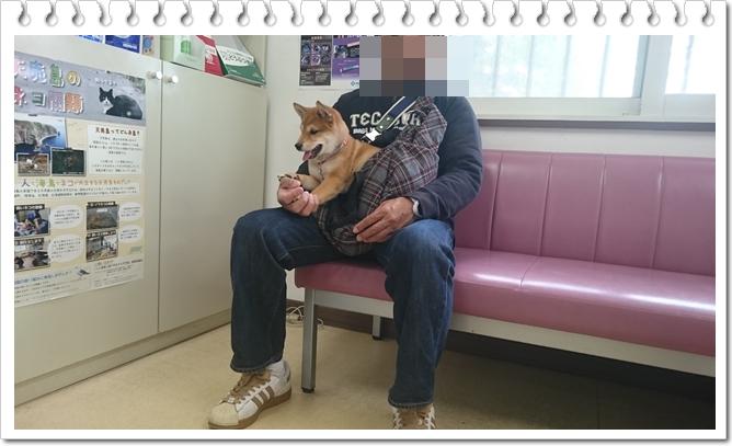 太郎のワクチン②