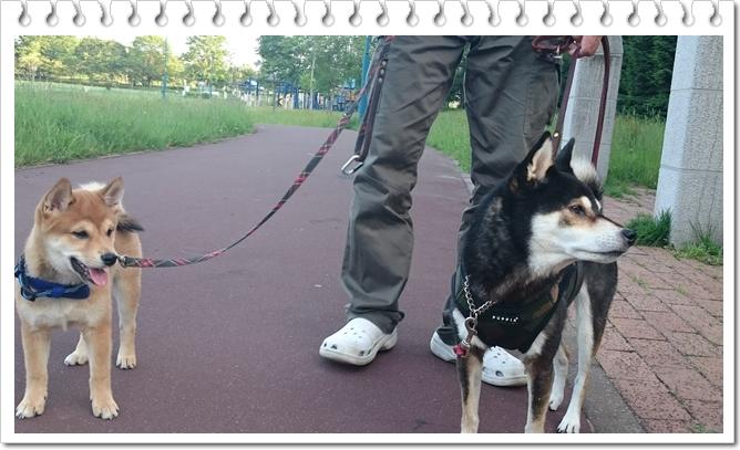二人で散歩③