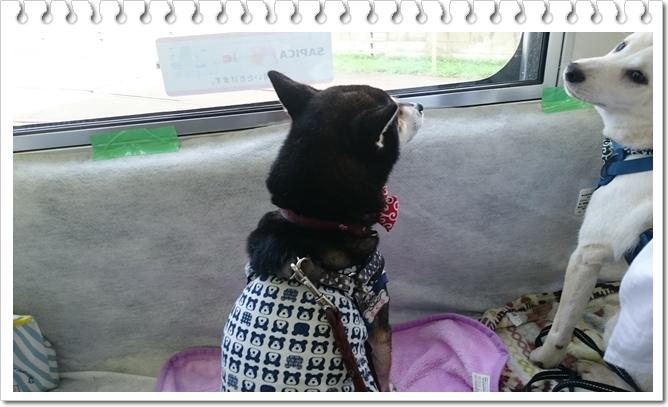 電車でGO④