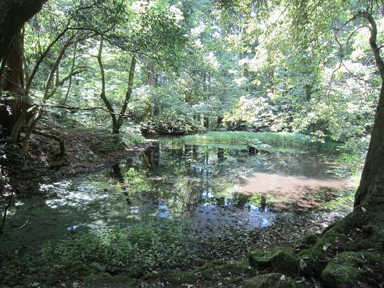 白山平泉寺 御手洗池
