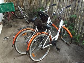 島の移動手段は自転車