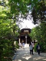 46浄瑠璃寺