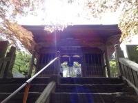 65三角寺