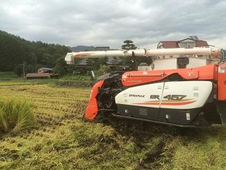 収穫20160922