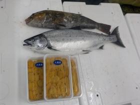4鮮魚セット2016415