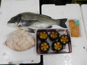 19鮮魚セット2016430