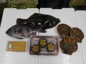 3鮮魚セット2016630