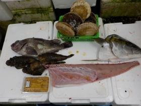 21鮮魚セット2016630