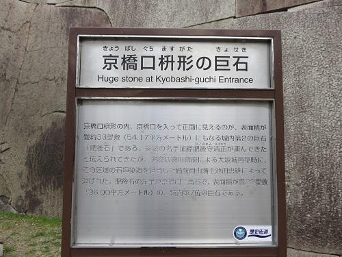 IMG_3623 巨石
