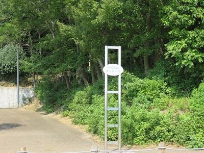 IMG_5531 高さ表示板