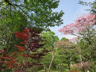 IMG_4547 花木園