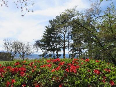 IMG_4549 花木園