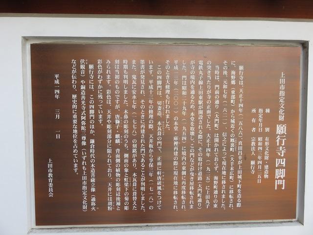 IMG_4691 願行寺