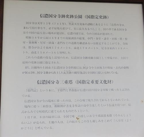 IMG_4725 信濃国分寺史跡公園