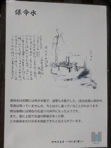 IMG_5546 保命水