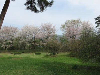 IMG_5659 御屋敷公園