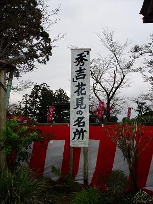 吉水神社36 花見の名所