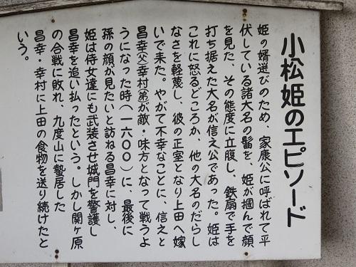 IMG_4603 小松姫