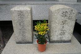 見廻組の墓