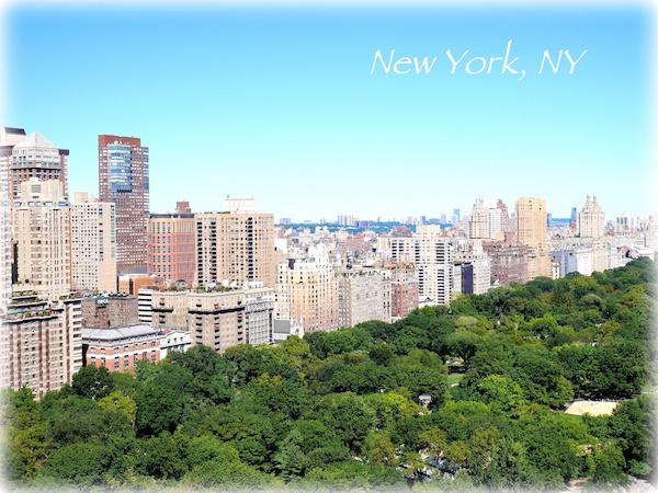 NY23x600.jpg