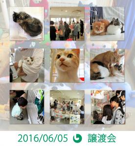 20160605譲渡会