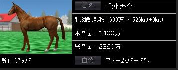 ゴットナイト馬体