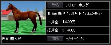 ストリーキング馬体
