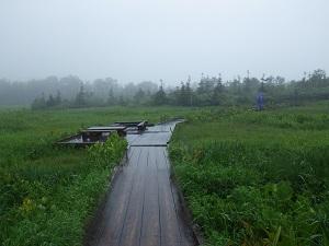 栂池自然園4