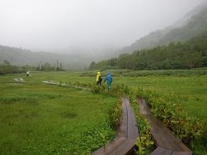 栂池自然園7