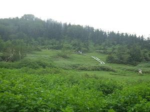 栂池自然園18
