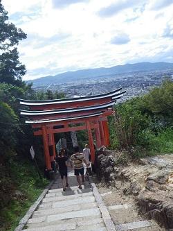京都の街を見渡す