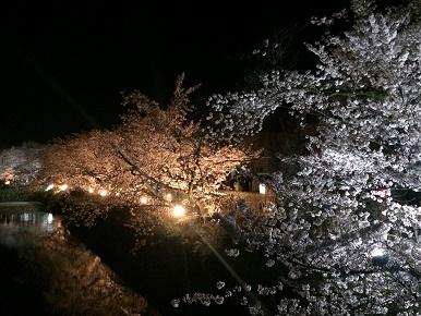 matsumoto19.jpg