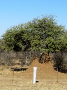 namibia1-3.jpg