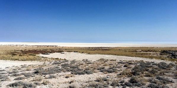 namibia2-13.jpg