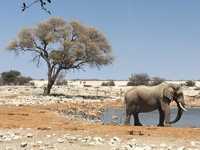 namibia2-24.jpg