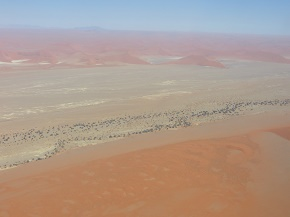 namibia4-8.jpg