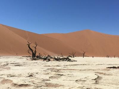 namibia5-10.jpg