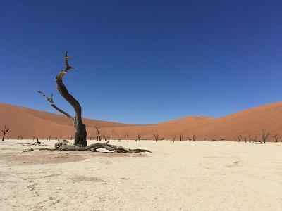 namibia5-9.jpg