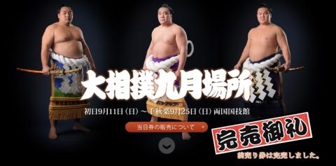 もう万全の人気な大相撲