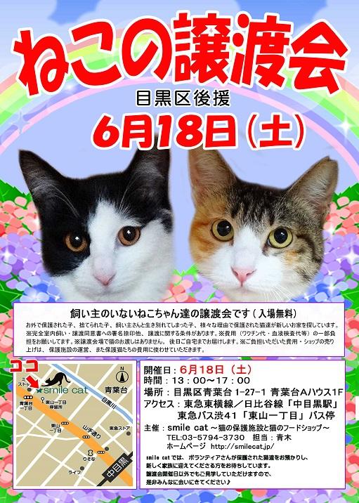 20160618_s.jpg