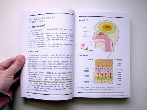 arohon1.jpg