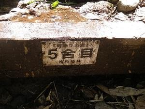 IMGP4695.jpg