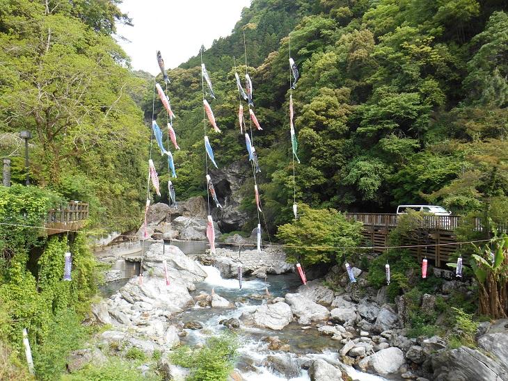 2016.5.8 吾川・鯉のぼり