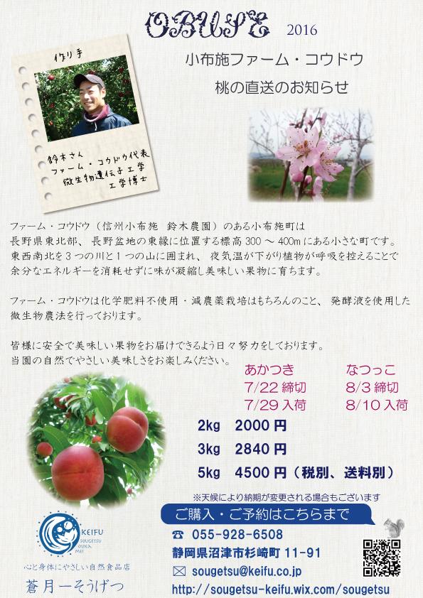 moblog_6903421c.jpg