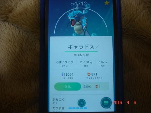 ポケ304