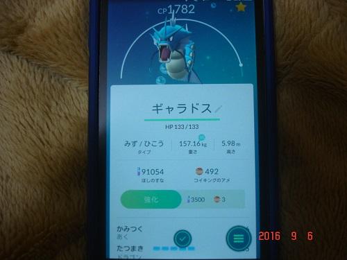 ポケ306