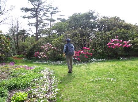 069花園