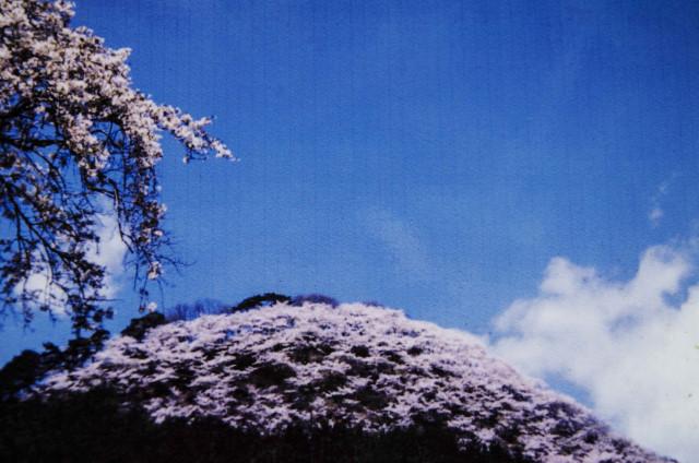 柄杓山12
