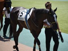 20160618 東京2R 3歳未勝利 クラウンリリー 01